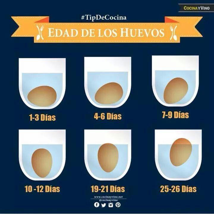 Si tus blanquillos tienen más de 20 días tiralos o tendras una desagradable sorpresa. _Tip de cocina.