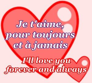 Je t'aime, pour toujours et a jamais - I'll love you forever and always