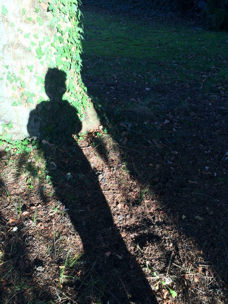 Schattenspiel im Garten Eden