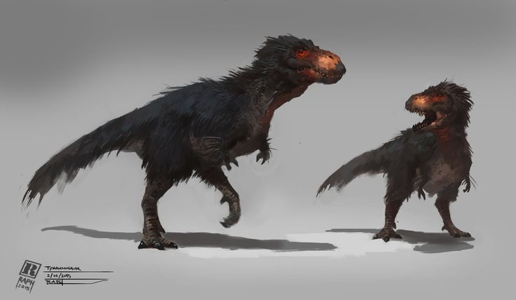 Fluffy T Rex. Not so weird as you might expect. Dinosaurs related to T Rex had feathers long before it came around, and T Rex is considered one of the more highly evolved dinosaurs, so...