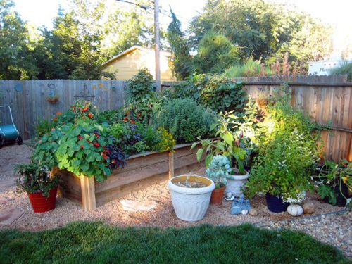 63 best Outdoor: Vegetable Garden images on Pinterest | Vegetable ...