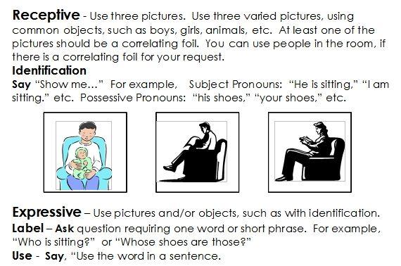 pronoun elicitation