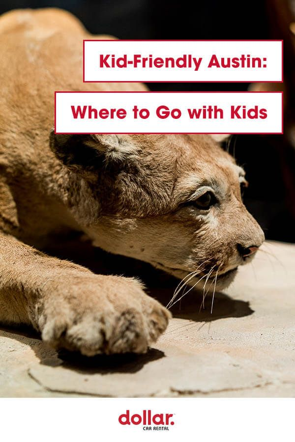 Put Smiles On Little Faces And Save Some Big Money When You Visit These Off The Wall Austin Attractions That Kids Are Kid Friendly Trips Dollar Car Rental Kids