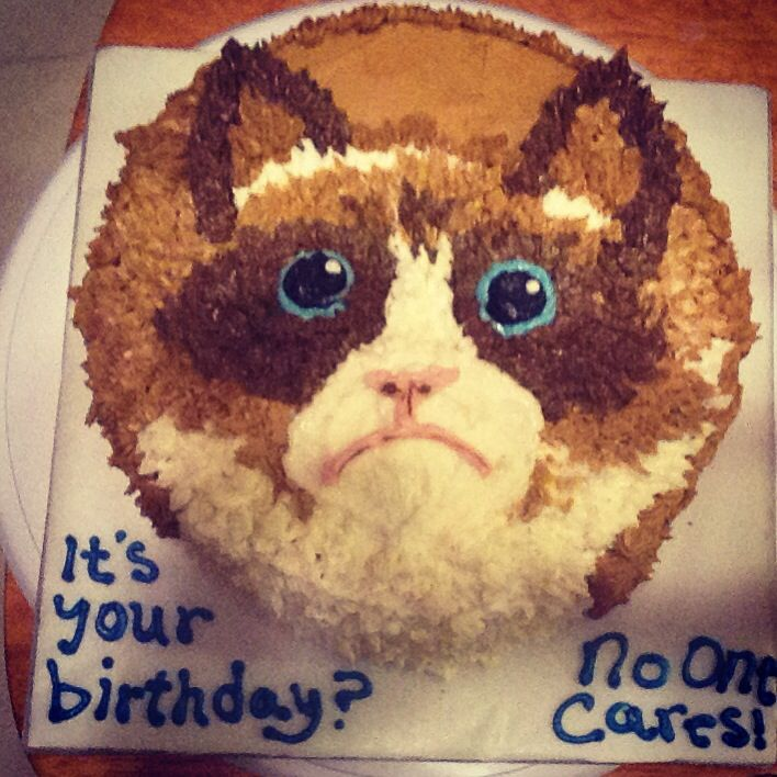 Grumpy Cat Cake Design : 25+ best Grumpy cat cakes ideas on Pinterest Paw print ...