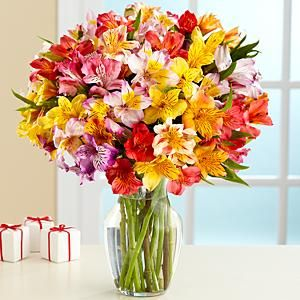 Send 25 stems of Peruvian Lilies in a Vase to India just for Rs1500. visit us amazegifts