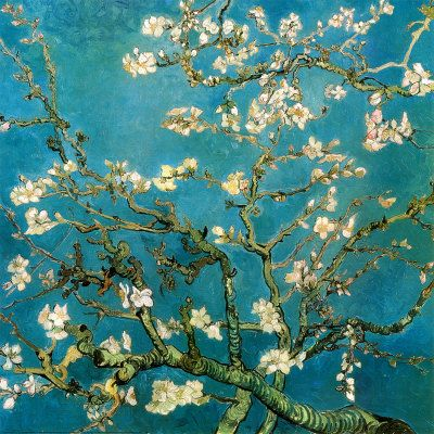 Almond Branches in Bloom, San Remy, c.1890  Art Print  by Vincent van Gogh: Vincent Of Onofrio, Cherries Blossoms, Vangogh, Almonds Branches, Vincent Vans Gogh, Art Prints, Trees, Van Gogh, Posters