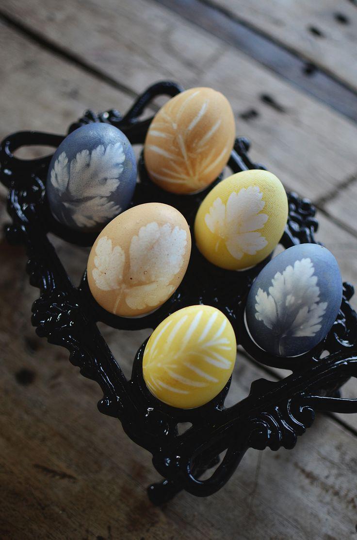 Påskpyssel: Färga ägg helt naturligt och gör vackra mönster med blad. Easterdiy, easter craft, easter egg