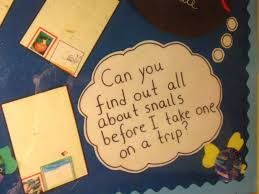 Image result for snail and the whale classroom display