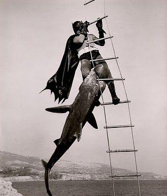 Batman vs. Shark: Batman Vs, Stuff, Movies, Bat Shark, Adam West, Sharks, Shark Repellant