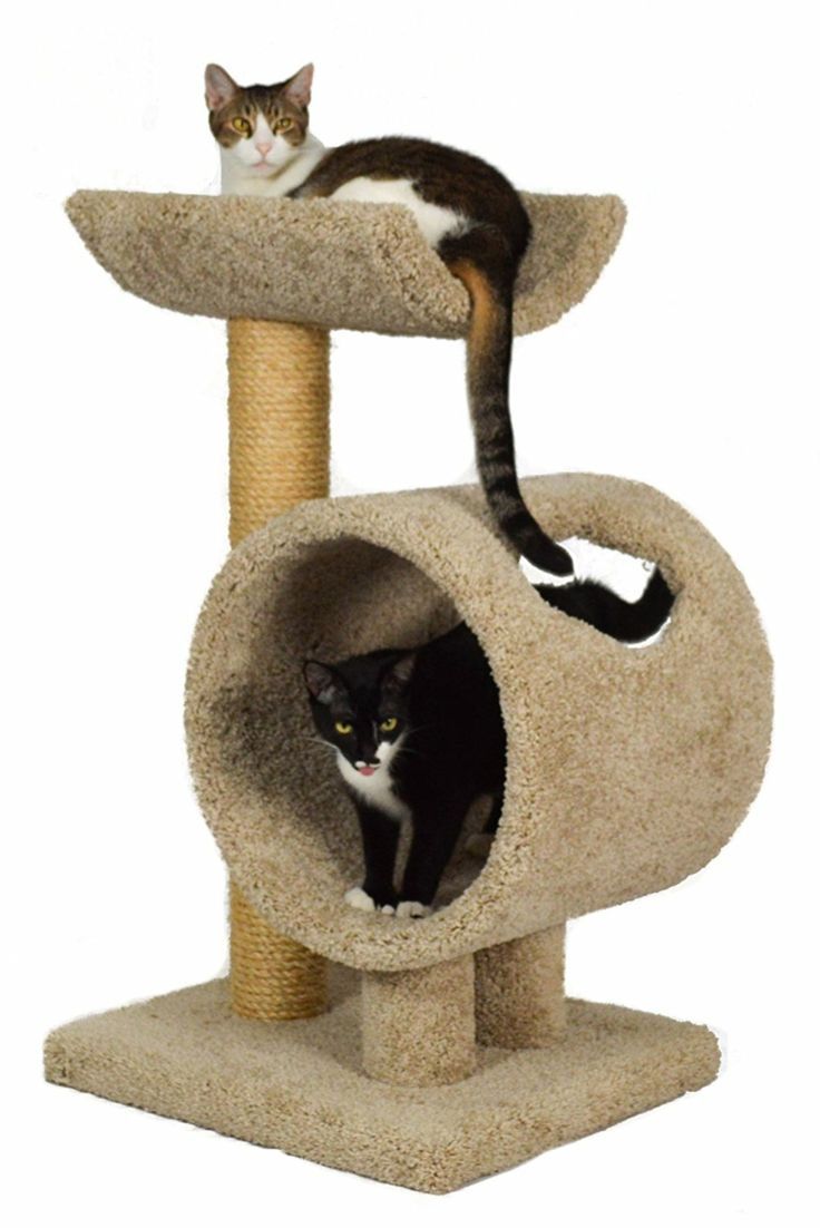 Wood cat furniture of high quality for large cats - Hunde und Katzen Cool Cats, Cool Cat Trees, Big House Cats, Cat Activity, Cat Scratching Post, Cat Condo, Outdoor Cats, Cat Furniture, Furniture Outlet