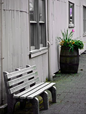 An alley on Granville Island with a park bench and a flower barrel by  raetuckerphotography.com