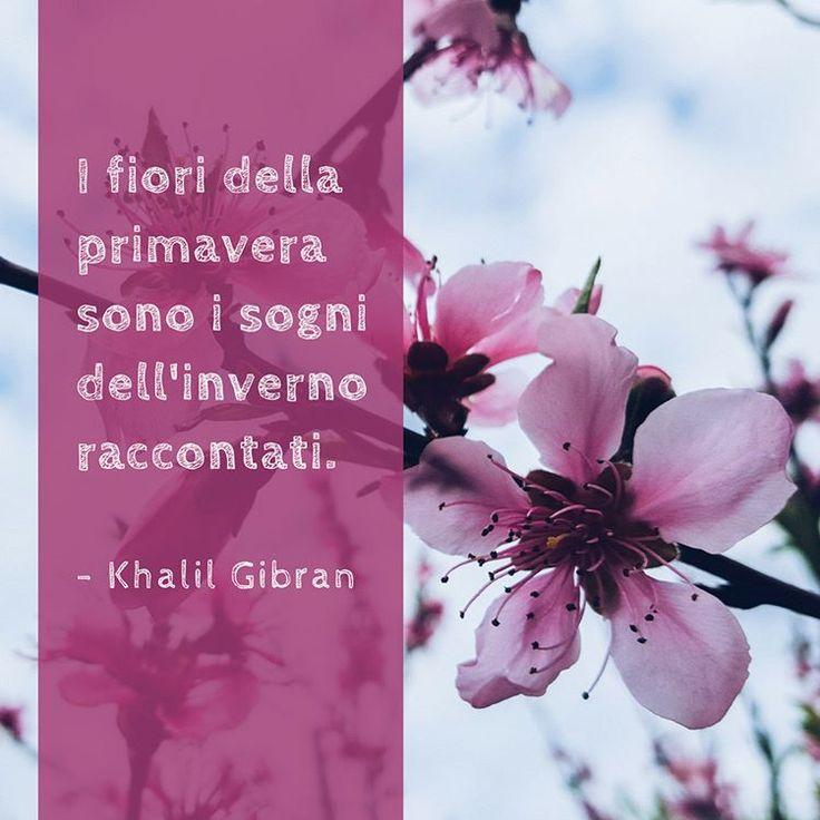 I fiori della primavera sono i sogni dell'inverno raccontati.  – Khalil Gibran    #cit #citazione #KhalilGibran #Gibran #quote #primavera #fiore #sogno