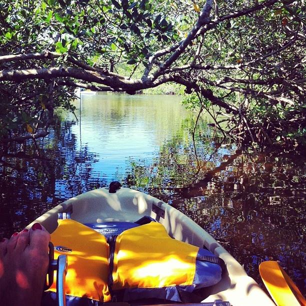 99 best pine island matlacha images on pinterest for Secret fishing spots near me