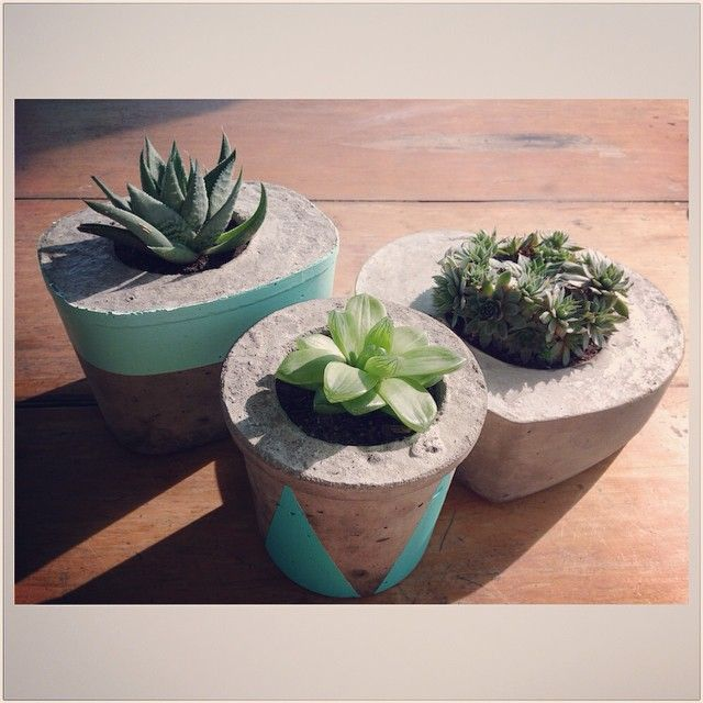 A sneak peek of new designs off to a stockist this morning. More details soon! #saltyshack #handmade #concreteplanter #succulent #concretedecor #concrete #haworthia #greenghost