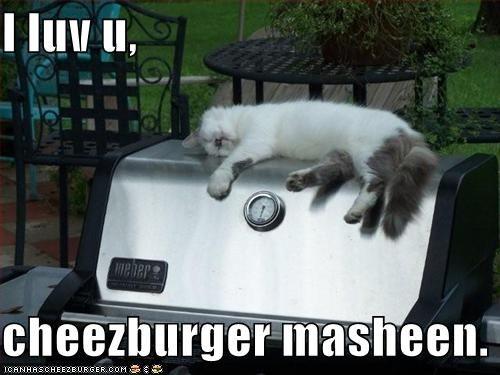 Mmm...cheeseburgers.