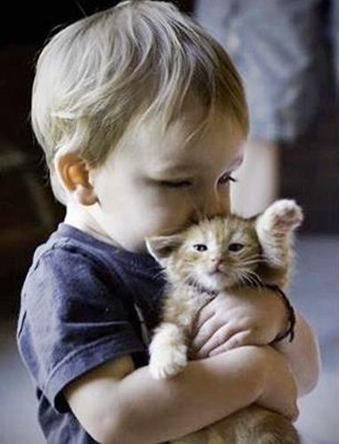 Alvó kisgyerek Mikulás-sapkában,Tündéri kisfiú és kislány,Itt járt a nagyi! :-)))) - nagyon édes, aranyos kép,Kisfiú cicával - nagyon édes kép ,Gyerekek - a kis matróz,Gyerekszerelem,Kislány játékbabakocsival és babával ,Kisgyerek kutyával - nagyon jól szórakoznak -:)),Kislány kutyussal,Tündéri kislány nyuszival, - jpiros Blogja - Állatok,Angyalok, tündérek,Animációk, gifek,Anyák napjára képek,Donald Zolán festményei,Egészség,Érdekességek,Ezotéria,Feliratos: estét, éjszakát,Feliratos…