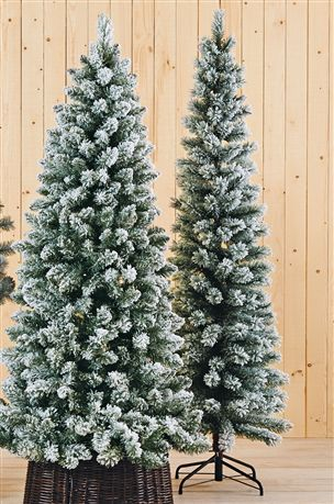 6ft Slim Snowy Christmas Tree Put It In A Basket To Hide The Ugly Bottom This Would Be Great For Front Porch Pinterest