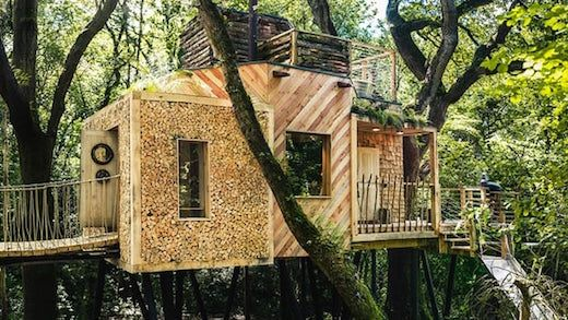 Glamping in a Treehouse in the forests of Dorset, England