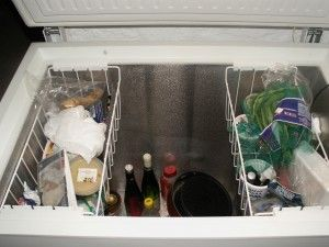 Convert a chest freezer to a refrigerator.....more energy efficient, consumes a fraction of what an RV fridge would use