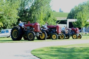 Vintage tractors. All in working condition, but too pretty to be working the land.