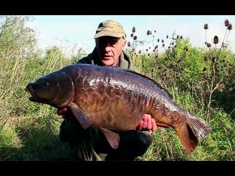 Dave Lane Carp Fishing Blog November from Fishtec