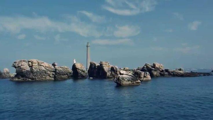 Böngésszenek újdonságaink között, és fedezzék fel az algák csodálatos varázserejét!  http://www.thalion.hu/