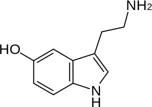 My next tattoo I think. Serotonin, the chemical for happiness. Maybe behind the ear placement
