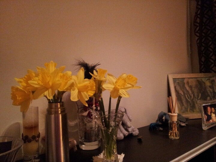 30 days - 30 photos. Day 26. The best thing about Spring is the acquisition of daffodils and their presence in my flat (even if one lot is in a thermos...)