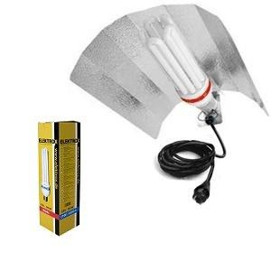 CFL / Low Energy Kit 85W Dual - 2700/6500k.