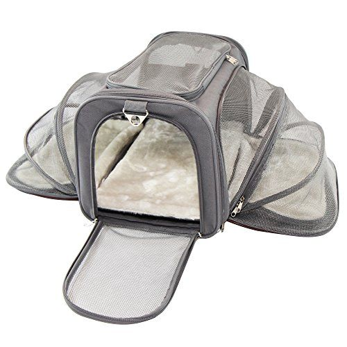 Jet Sitter Luxury Pet Carrier  Airline Size Soft Sided Foldable and Spacious Improved Design with Seat Belt Buckles Mesh Stretch Pocket Velcro Comfort Handle (18x11x11 Dark Gray)