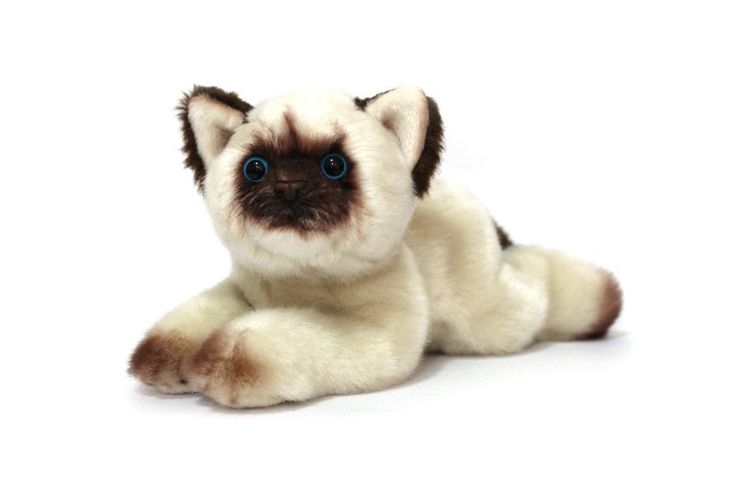 CUDDLY CRITTERS SOFT PLUSH HIMALAYAN CAT OSCAR I COOL CAT COLLECTABLES