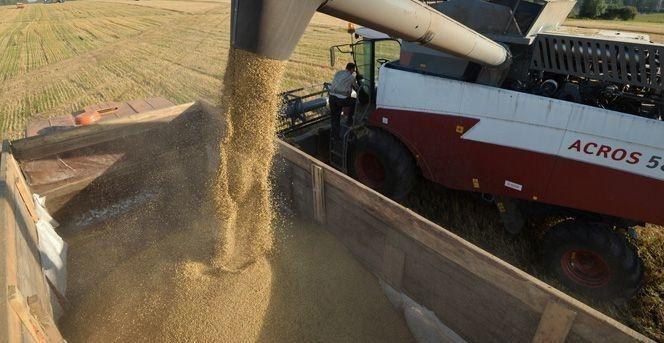 Tarım arazilerinin yüzde 18.90'ı yok oldu