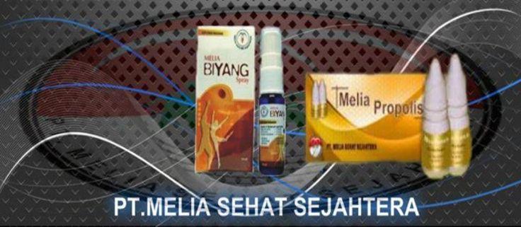 Bisnis Melia Propolis Dan Melia Biyang