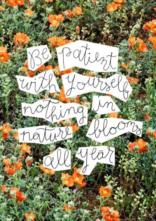 Be patient with yourself. Nothing in nature blooms all year.
