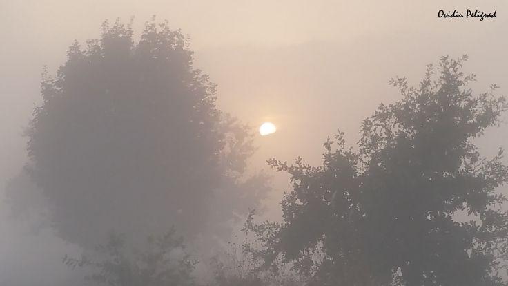 Rasarit de Soare in ceata