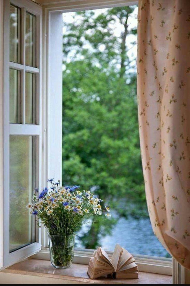 картинки красивые окна с занавесками кружкой