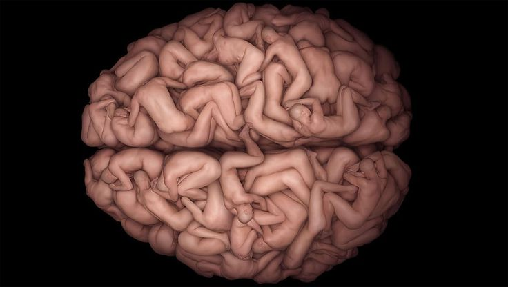 The Human Brain with people