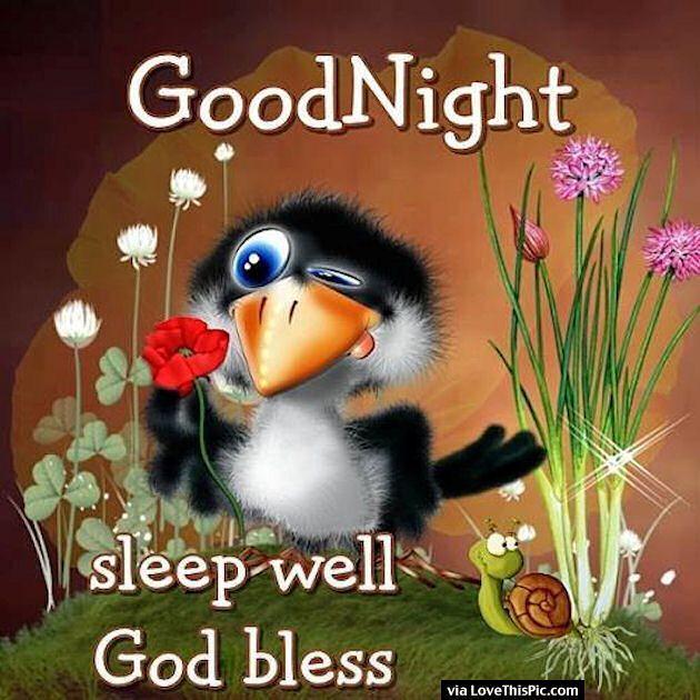 Goodnight Sleep Well God Bless