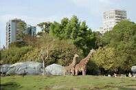 Zoologico de Chapultepec