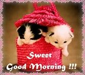 Image result for cute goodmorning images