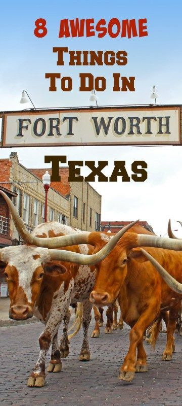 8 Awesome things to do in Fort Worth, Texas, America