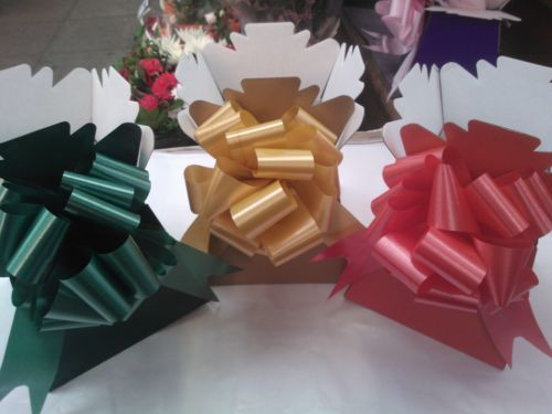 10-x-living-vase-Flower-Bouquet-Delivery-Boxs-10-x-50mm-Pull-Bows