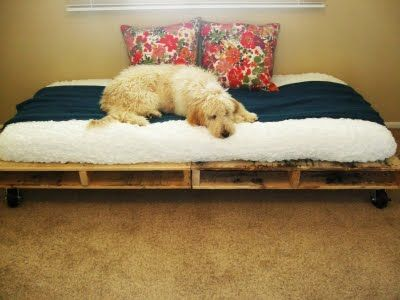BrightNest | Five Ways to Recycle Pallets for DIY Home Projects  Amanda Harrington, you could at least fix up Saint's bed like this with pillows in the background :)