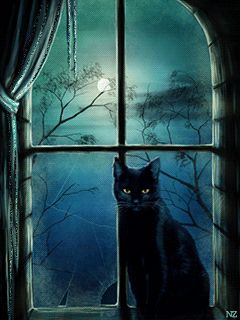 Halloween Night animated witch gif halloween happy halloween black cat halloween pics