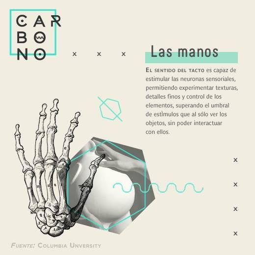 · El poder de nuestras manos ·  Manipular las cosas con las manos es una habilidad del ser humano, pero también forma parte de una experiencia que supera al hecho de solo verlas.