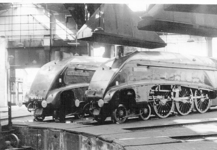 Bittern and Sir Nigel Gresley at York roundhouse 1967 my picture as a teenager ... bloody years ago