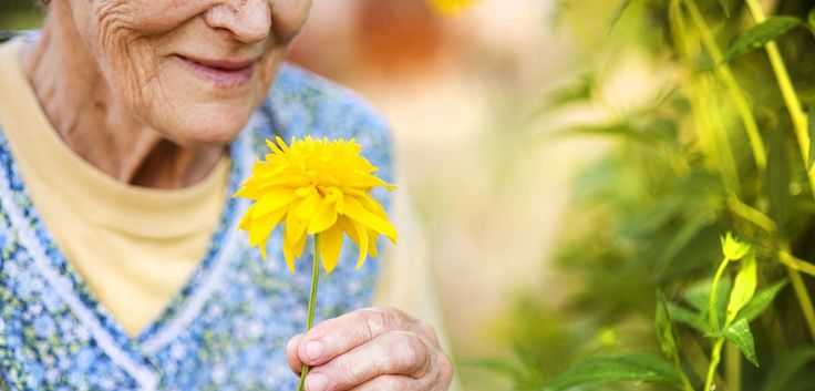 Nature Prescription: The Missing Link in Dementia Treatment