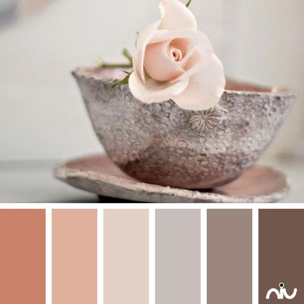 blush cup (object) Color Palette - Paint Inspiration- Paint Colors- Paint Palette- Color- Design Inspiration #colourscheme