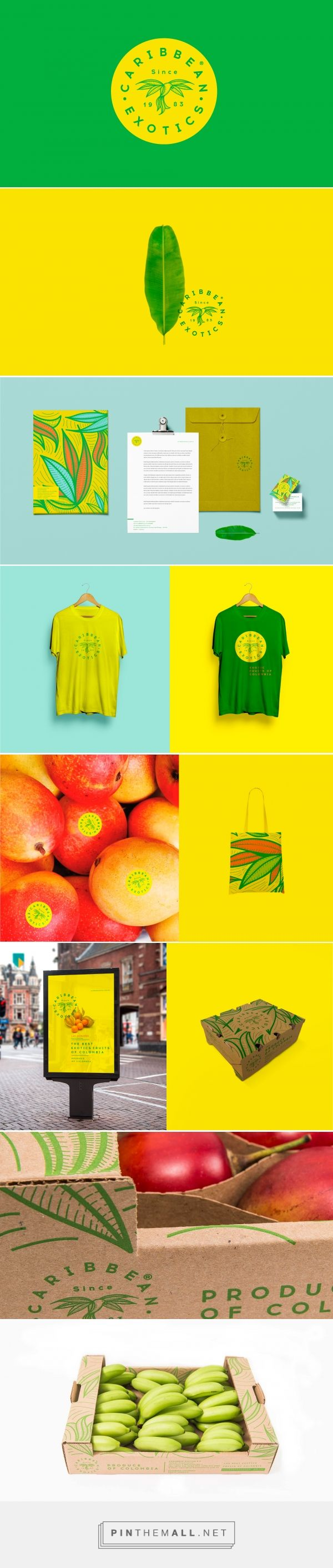 Caribbean Exotics Fruit Branding and Packaging by Creamos Agency