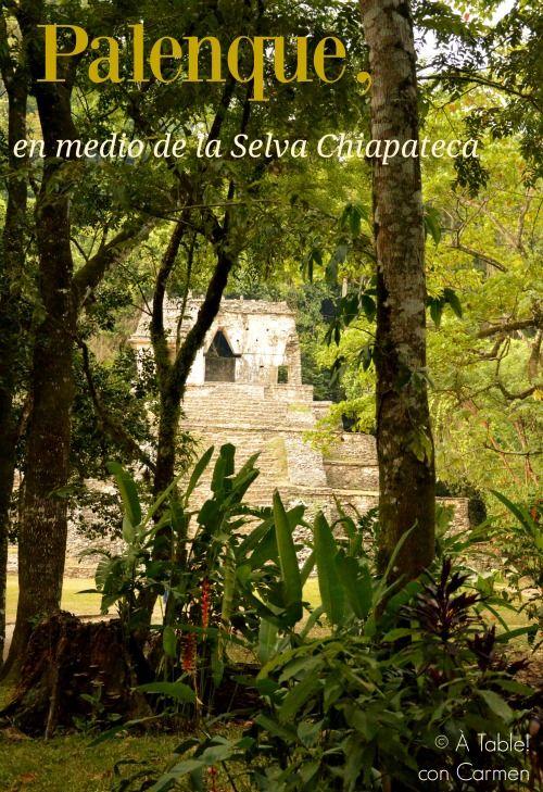 Palenque, en medio de la Selva Chiapateca